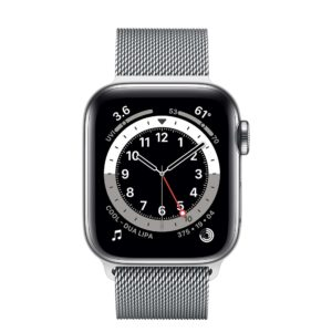 Apple Watch Series 6 Silver Stainless Steel Case with Silver Milanese Loop
